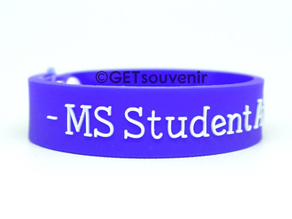 ms student ambassador